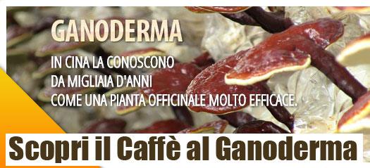 caffè-al-Ganoderma